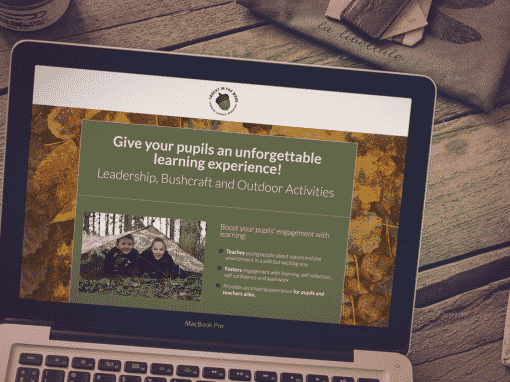 Landing Page Design – Taught in the Wood
